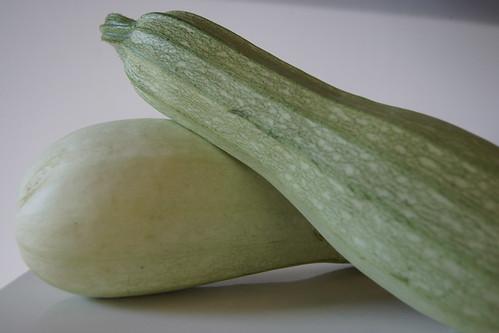 Zucchini and Pasta Slice - Zucchini