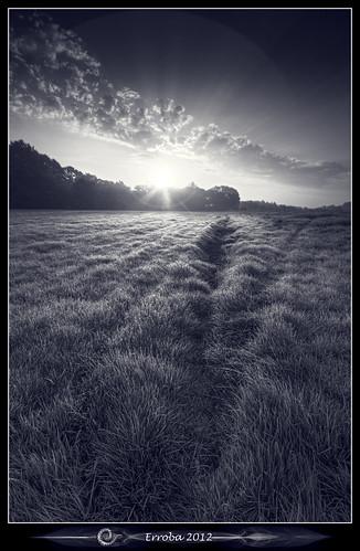 morning white black field grass clouds sunrise canon belgium belgique belgië rays erlend mechelen 60d hetbroek erroba robaye monochrometrees