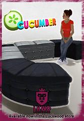 Lockwood_Cucumber_ModularFunitureBlackSilver_022212_256x368