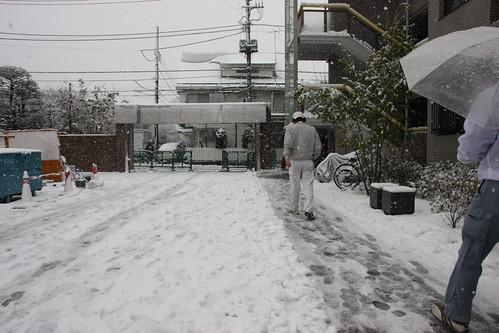 雪の中でも・・・