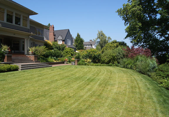 The front lawn curves gracefully, edged by mature maples.