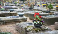 St. Rochus Cemetery