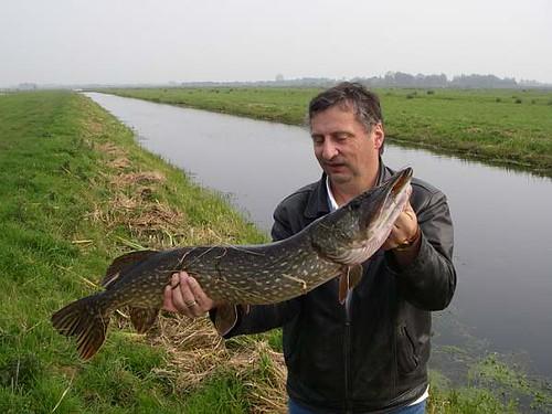 Marius met snoek uit een GHV polder