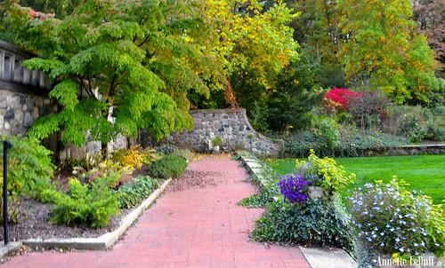 Garden Eden