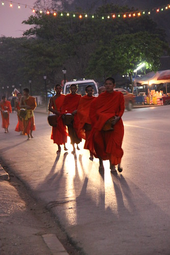 Monks participating in the early morning Alms giving ceremony