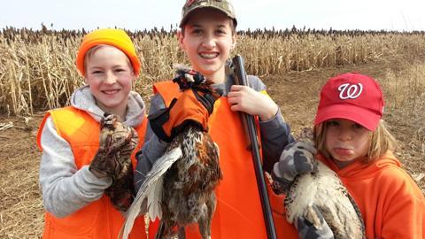 pheasants1-0414