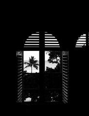 Early morning window shutters