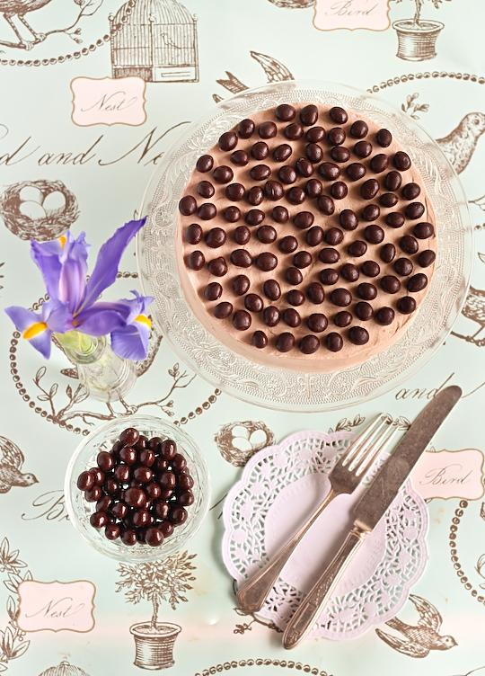 mocha_marble_cake-2
