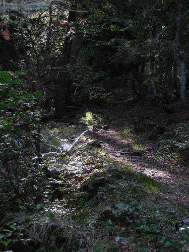 moundeilhs -septembre 2011 016
