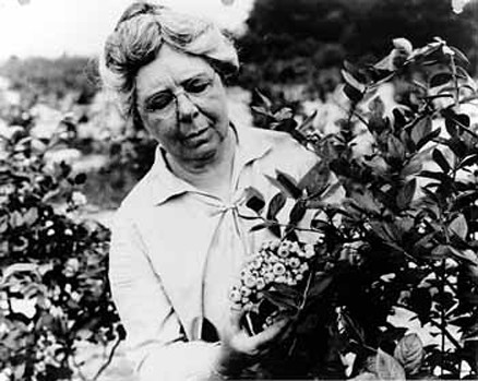 AMS, Women's History Month, Elizabeth Coleman White, Blueberries, Research and Promotion Program, Specialty Crop Block Grant Program