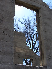 Homestead Windows