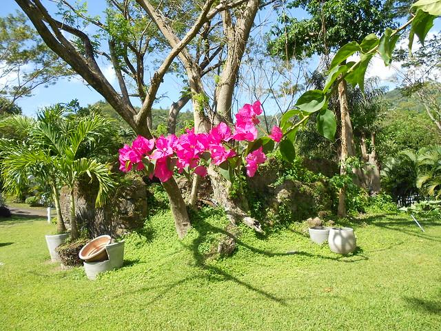 Grenada 2012