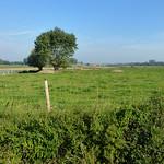 Looking north from Helleketelweg