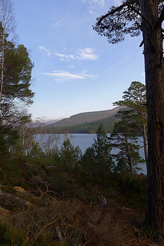The hills beyond Loch an Eilein