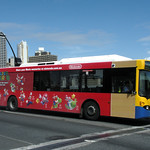 Brisbane Transport 648