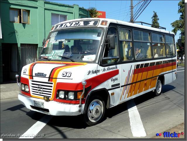 Transp. Av.Alemania-P.Nuevo, Linea 1 Temuco.-