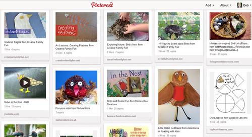 Pinterest - Bird Unit Study
