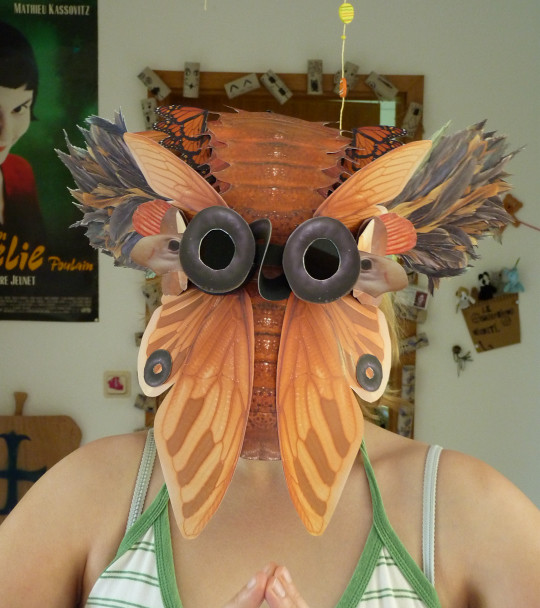 TRITTE- Masque constructor  (3)
