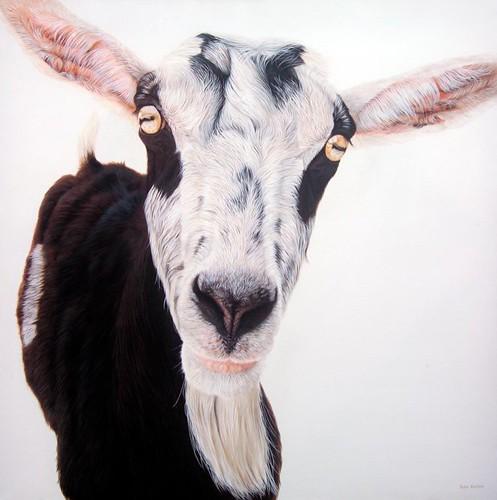 Ester Curini, Agostina da Ticineto, 2009, acrylic on canvas, 36 x 36