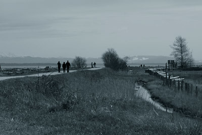 Boundary-Bay-Park-081