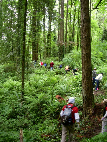 Forest_park_volunteers portland