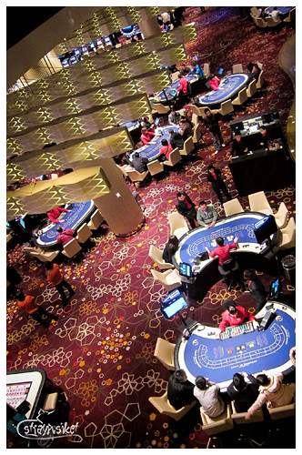 city of dreams casino