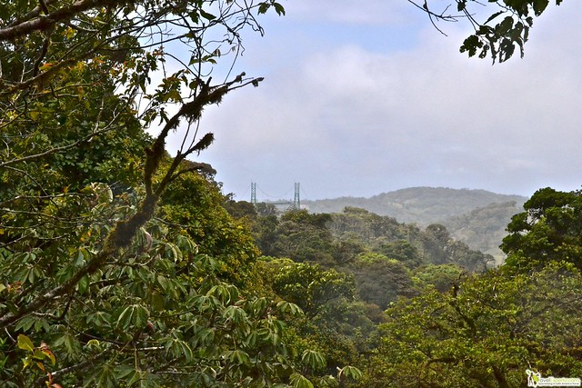 A List of the Top 10 Adventure Tours Costa Rica! - hiking