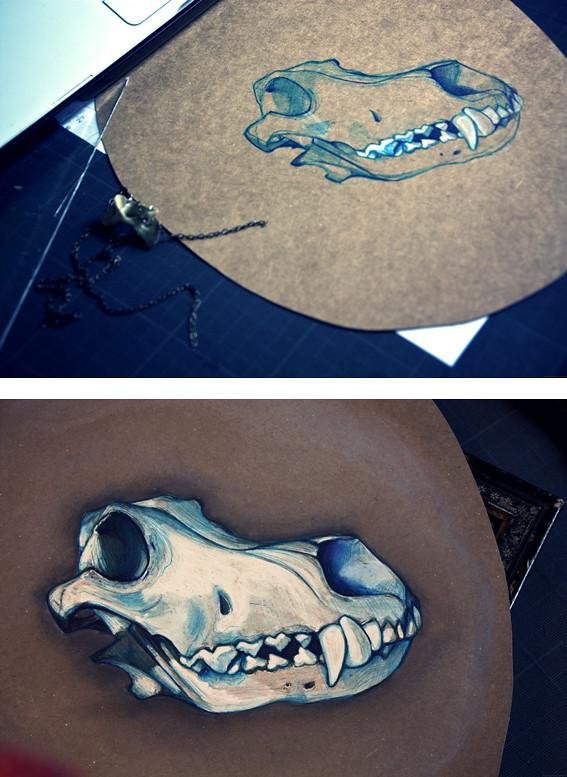Crâne Loup #1 © Emilie Vasset