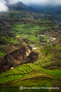Colca Valley Andenes