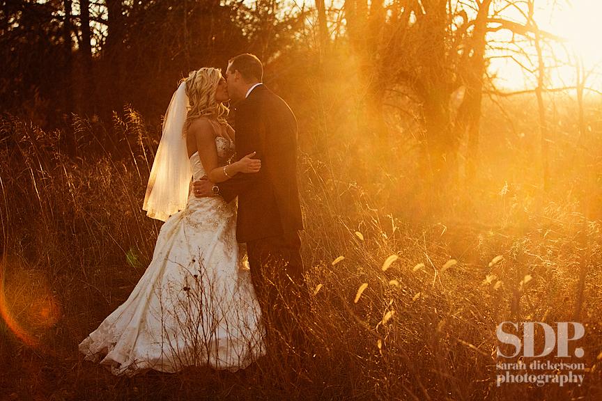 Lodge at Ironwoods Park wedding photos