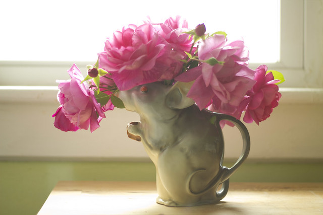 roses in a mouse pitcher