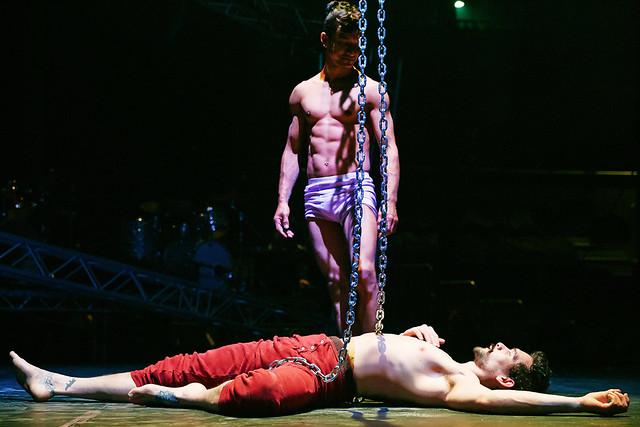 circus_puffball_6W5A4135