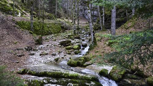 geotagged schweiz switzerland nikon wasser suisse camino hiking path natur bach che wandern wather wanderweg fleurier nikonshooter cantondeneuchâtel pouettaraisse nikonschweiz d5300 capturenx2 ponte1112 nikkor18200vrll viewnx2 geo:lat=4688894845 geo:lon=660650612