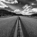 The Road Ahead by Marcela McGreal