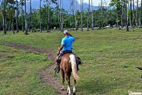 6804096496 52fe7537ed Horseback Riding Tour to Waterfalls in Arenal, Costa Rica