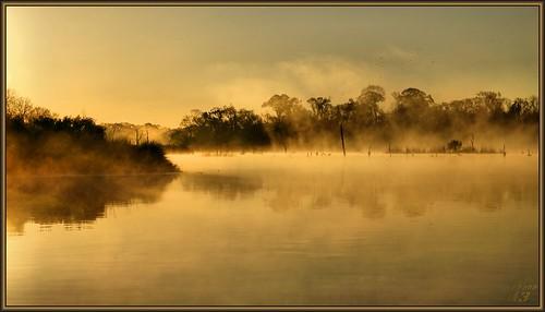 reflection nature water fog sunrise dawn golden texas scenic bayou pasadena canoeing paddling bayareapark armandbayou flickrdiamond