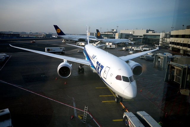 ANA JA805A Boeing 787-8 Dreamliner at FRA