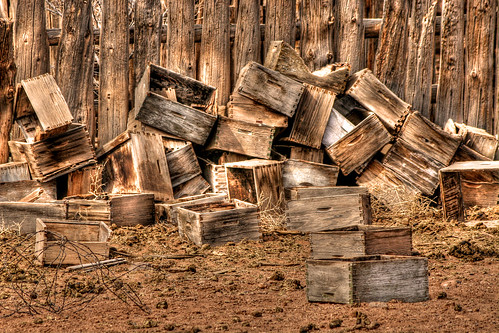 Abandoned Bee Hives
