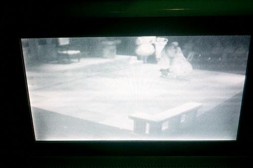 Show via webcam