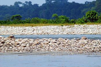 Murti river