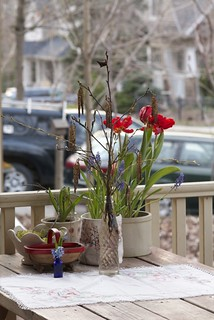 capturing spring on the porch