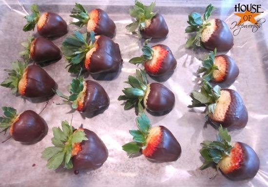 chocolate_covered_strawberries_hoh_10