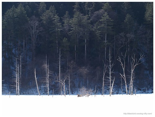 Ontake frozen lake #01