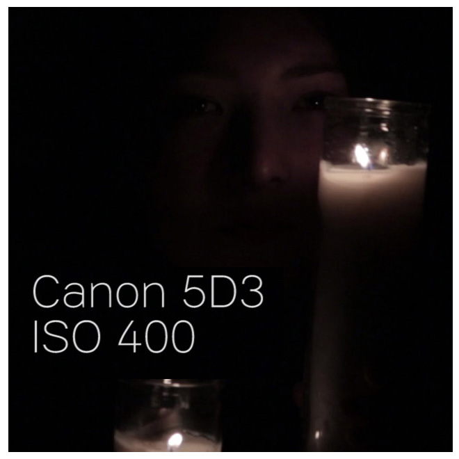 canon5d3_iso400_100percentcrop