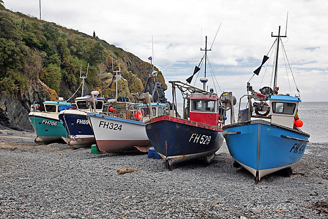 Inshore fishing boats on the beach at cadgwith cove for Inshore fishing boats