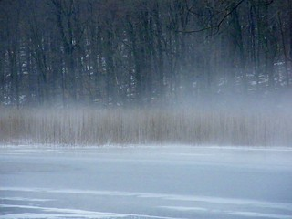 Icy Lake in Mist