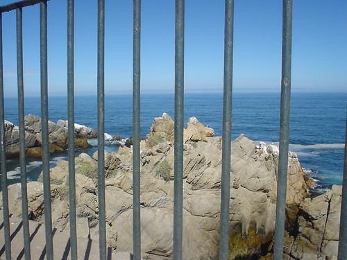 VIÑA II 18 DE FEBRERO 2012 059