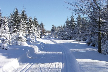Kam na běžky - Lyžování - Články o lyžování - Wild-cat.cz a06ce56eba