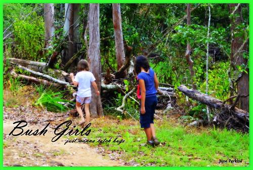 bushgirls