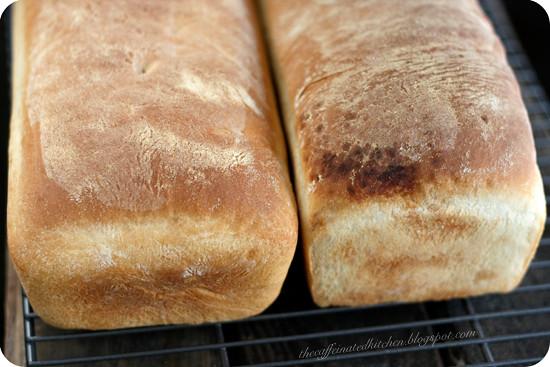 White Bread & Cinnamon Swirl Bread